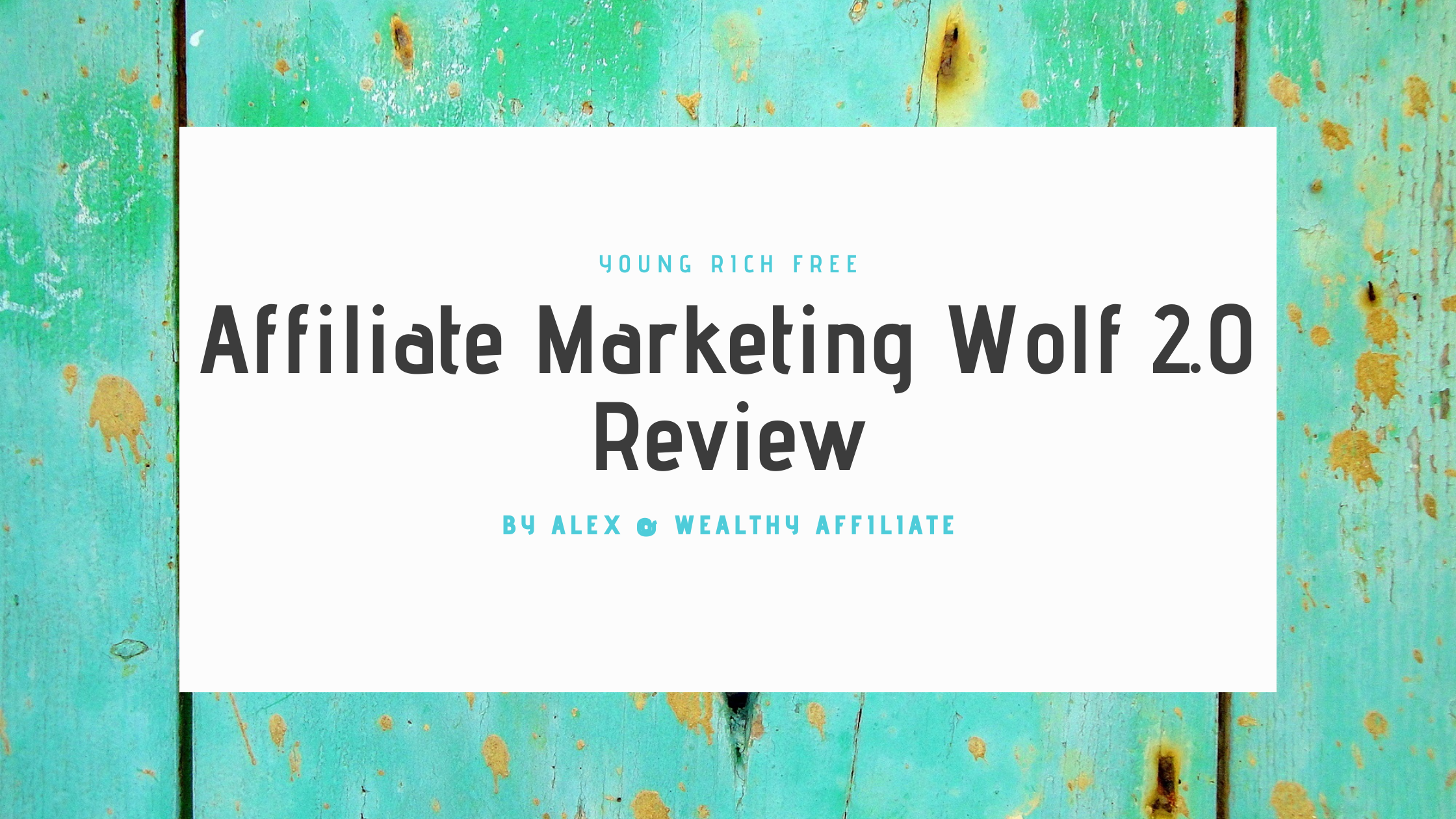 Affiliate Marketing Wolf