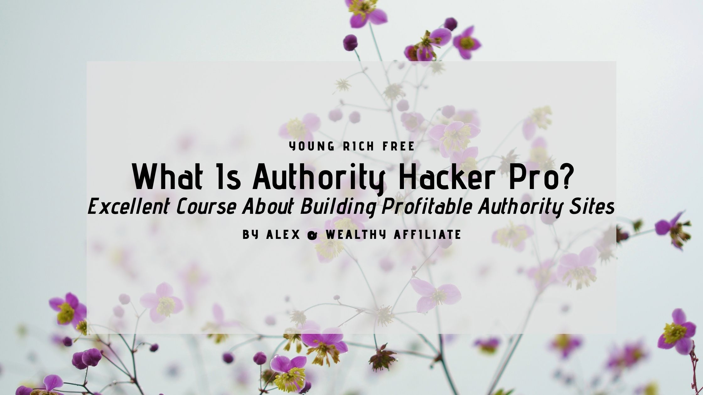 Authority Hacker Pro